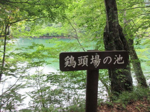 Ketobanoike Pond
