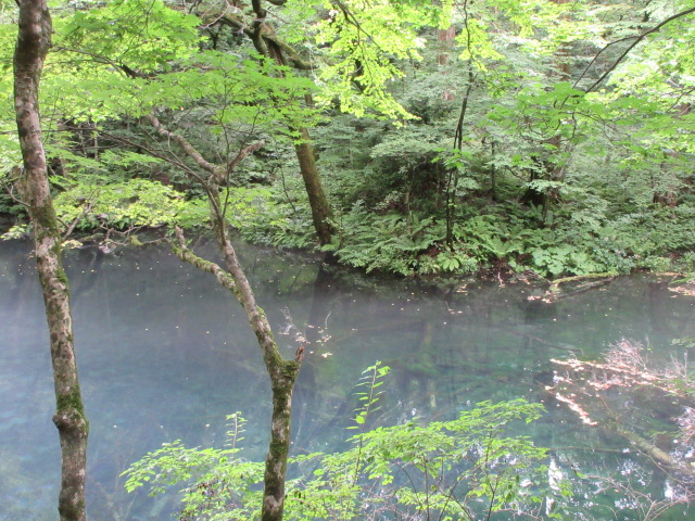 Wakitsubonoike Pond