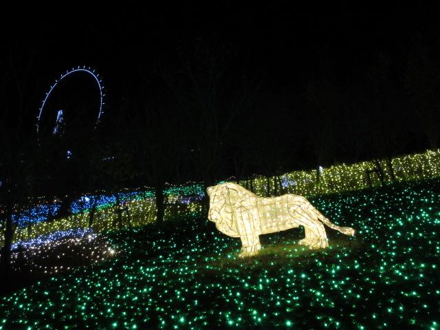 光の動物園