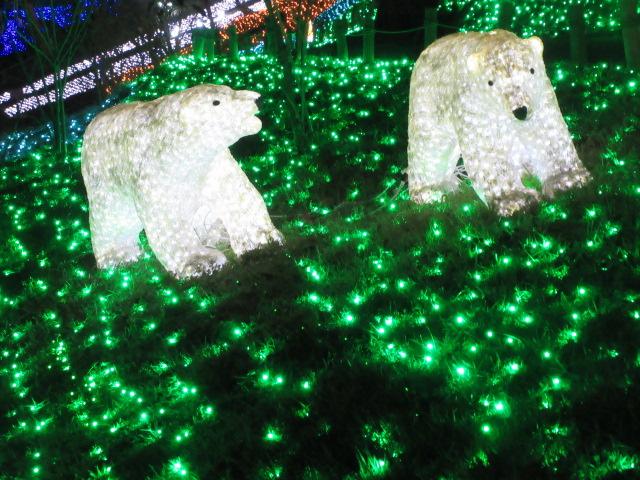 光の動物園のクマ