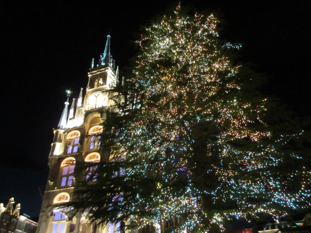 アムステルダムシティの巨大クリスマスツリー