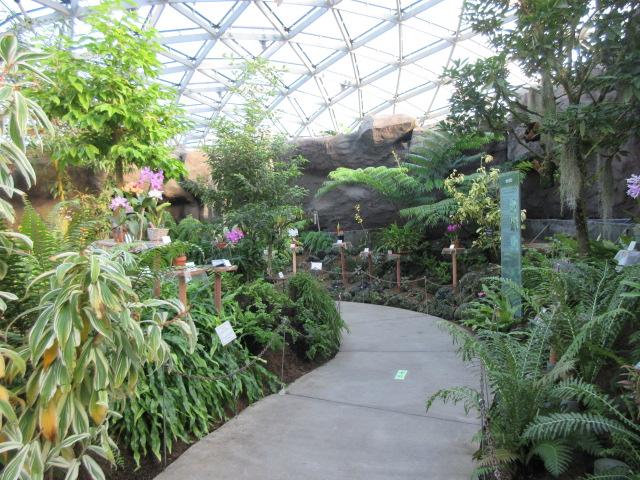 新宿御苑の大温室の内観