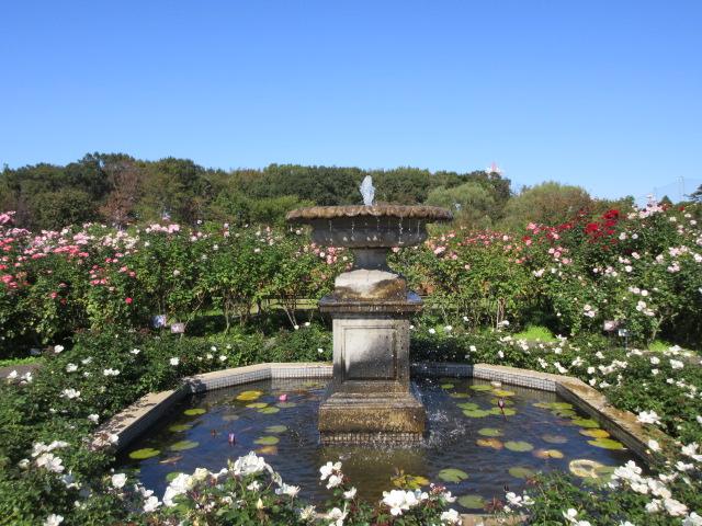 Fountain of Eden