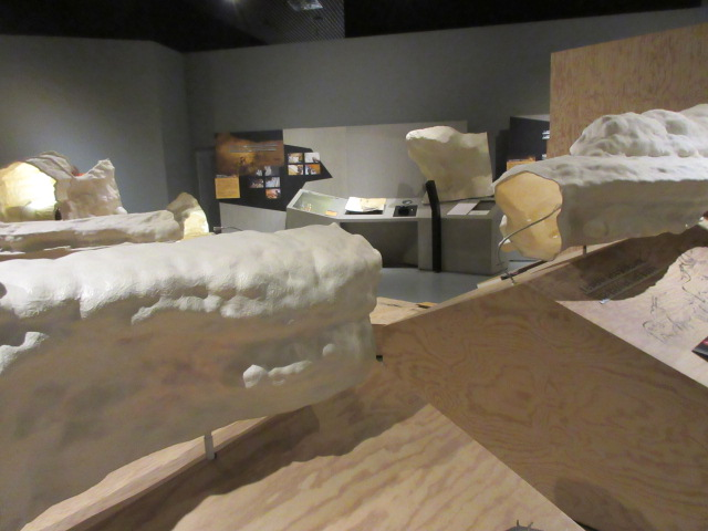ラスコー洞窟再現模型
