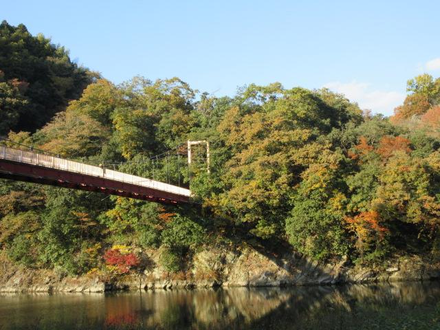 弁天橋と周囲の紅葉
