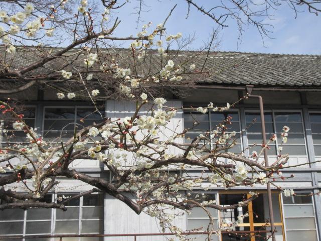 富岡製糸場の寄宿舎