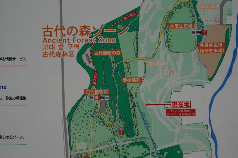 古代の森ゾーン