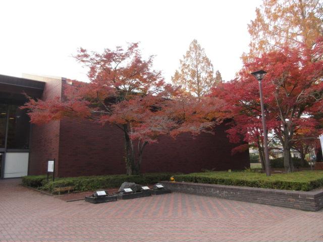 自然の博物館の外観と紅葉
