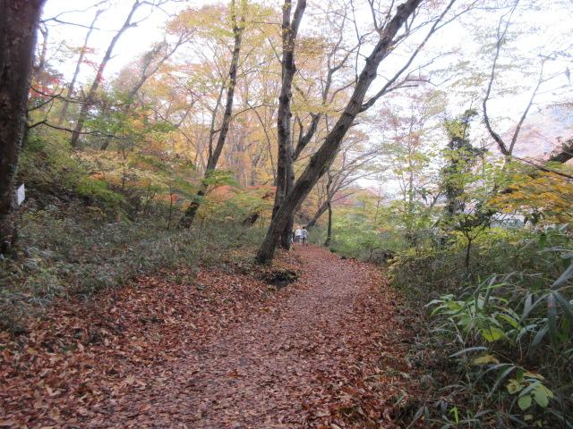 長瀞渓谷のハイキングコース