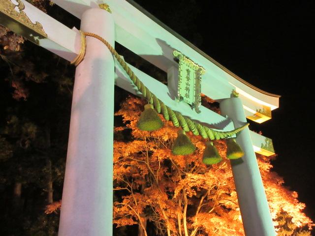宝登山神社の鳥居とライトアップ