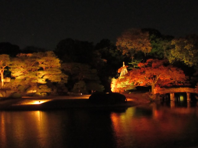 田鶴橋と中の島の紅葉ライトアップ
