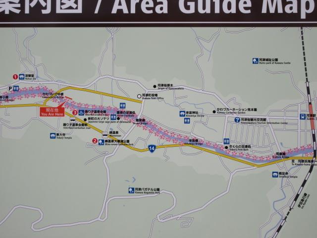 河津桜まつりのモデルコース