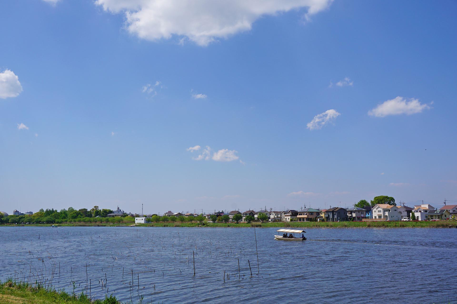 城沼の遊覧船