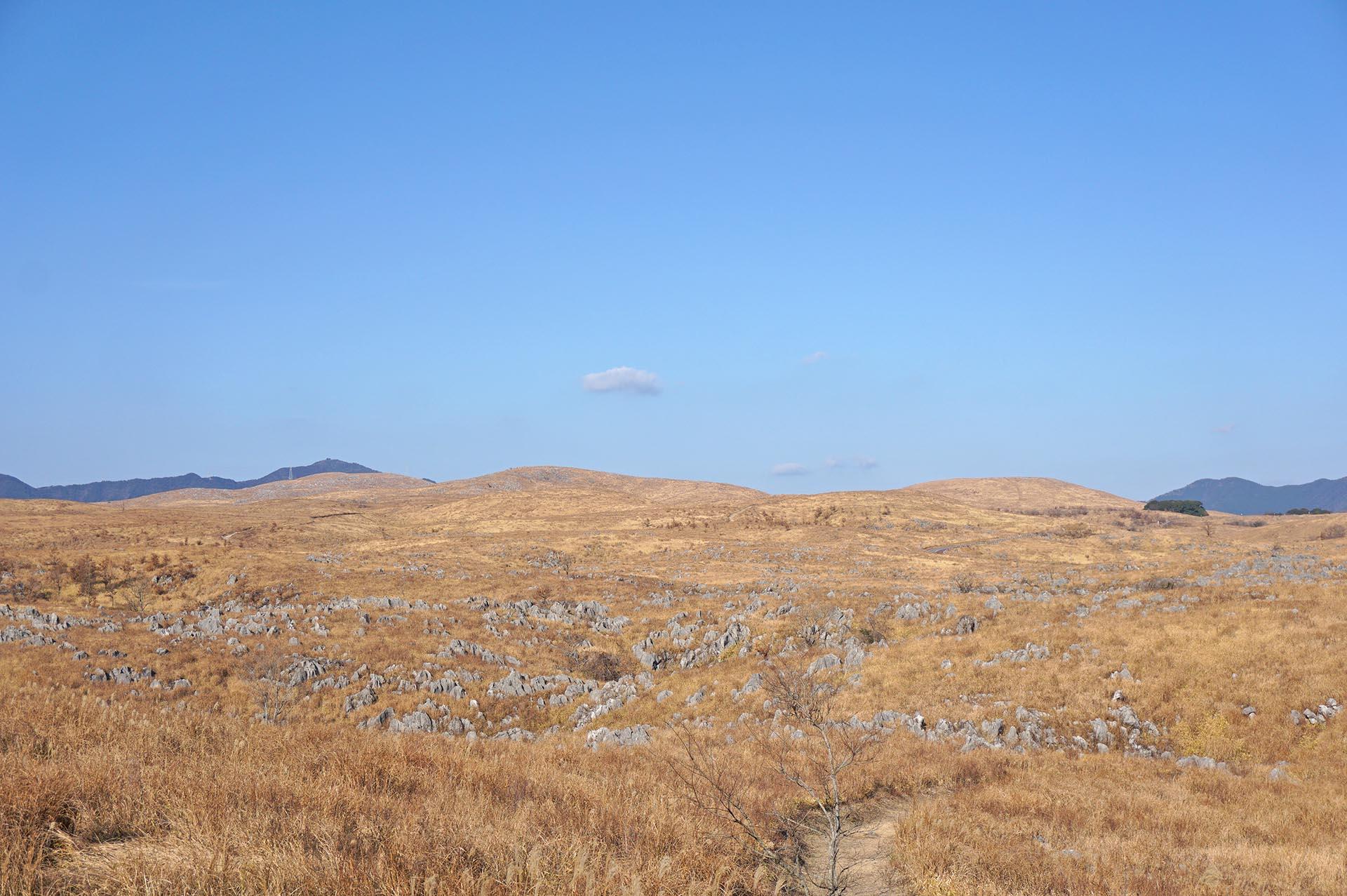 秋吉台の若竹山からの景色
