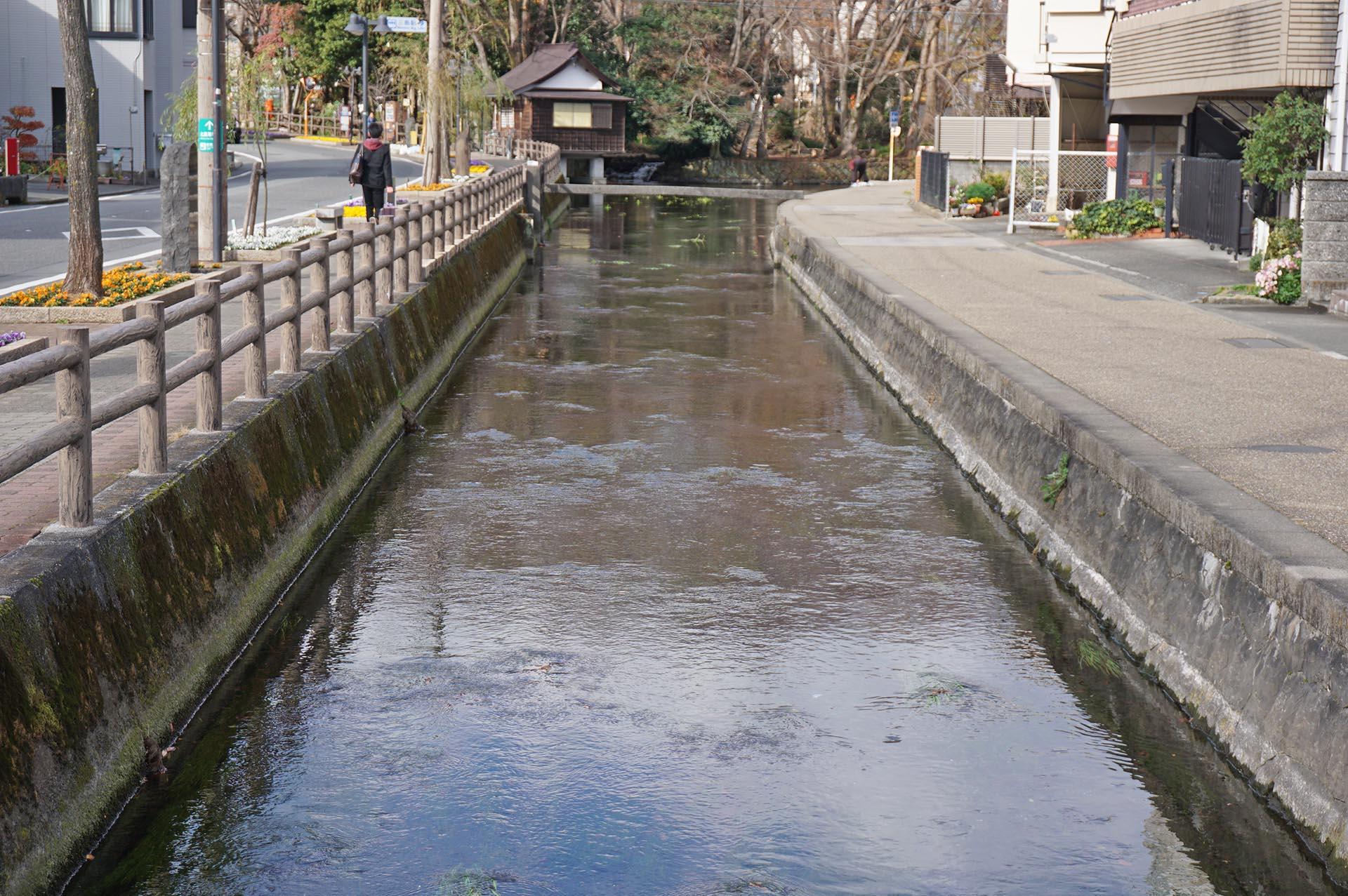 三嶋大社に徒歩で行くときの水路