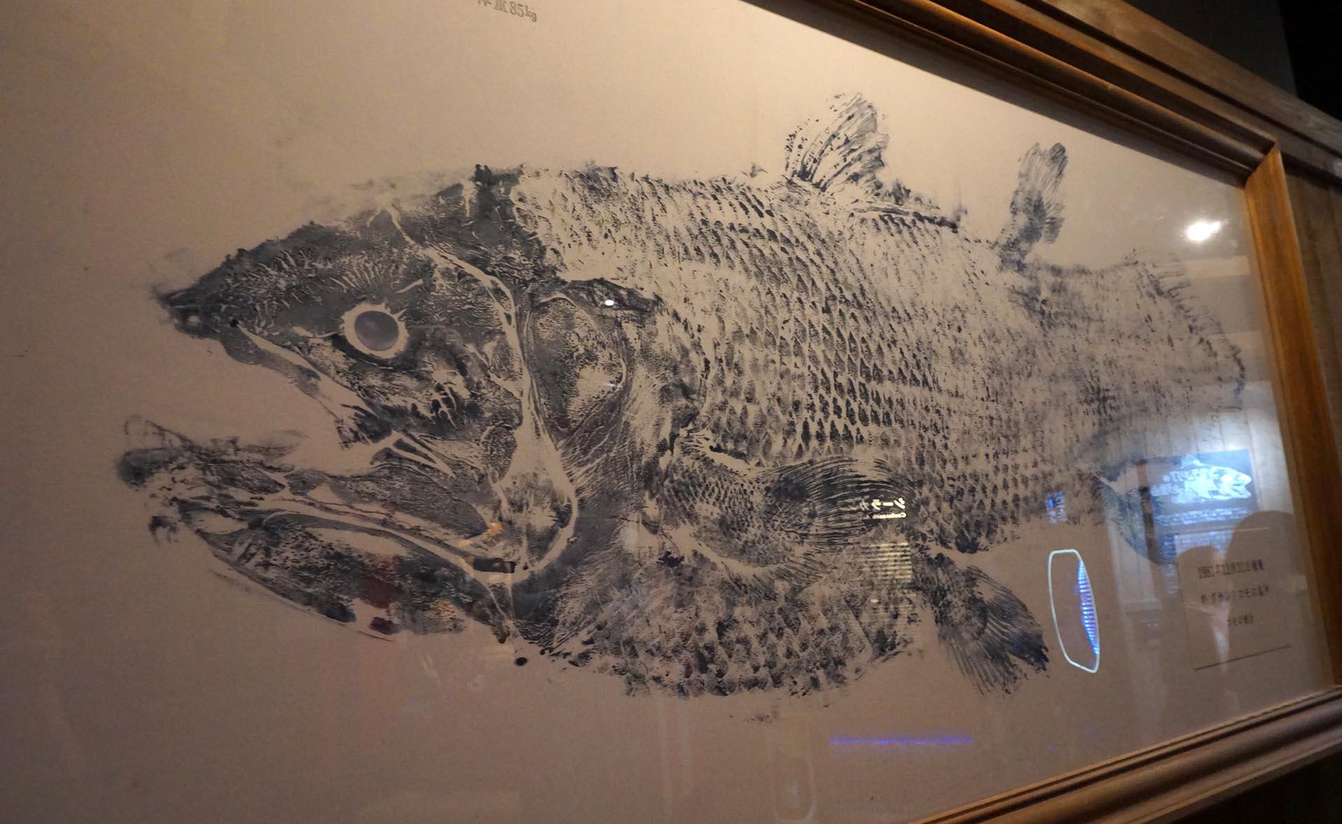 沼津港深海水族館のシーラカンスの魚拓
